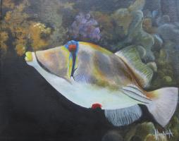 Наталия Емиловна Воденичарова. Picasso triggerfish - холст масло