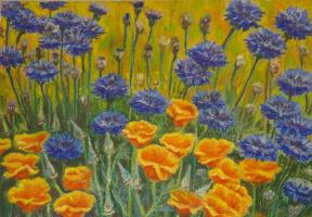Irina Dronova. Cornflowers
