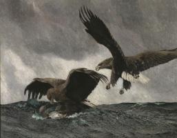 Бруно Лильефорс. Охота орланов