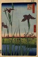 "Irises in Horikiri. The series ""100 famous views of Edo"""