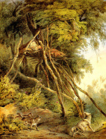 Карл Бодмер. Жилье на дереве