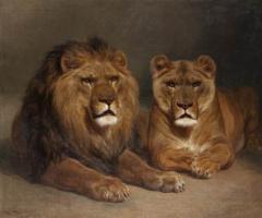 Роза Бонёр. Лев и львица