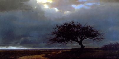 Иаков Коллинз. Дерево