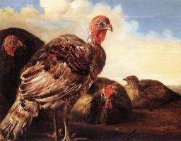 Альберт Кейп. Домашняя птица