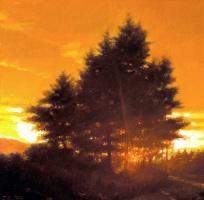 Иаков Коллинз. Закат и дерево