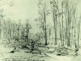 Forestry felling