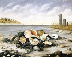 Марта Каун. Пейзаж с ракушками