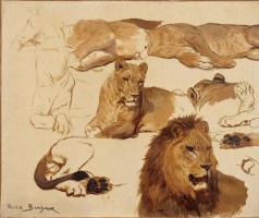 Роза Бонёр. Лев и львица. Эскизы