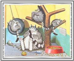 Сны кошек 37