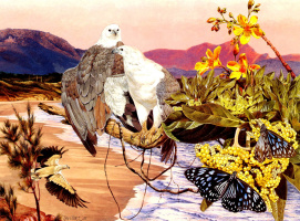 Тони Оливер. Белобрюхий орлан