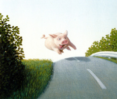 Michael Owl. Careless pig on the highway