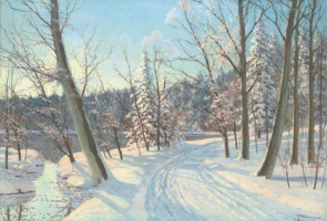 Дорога в снежном лесу