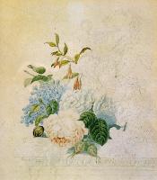 Генриетта Роннер-Книп. Изучение цветка