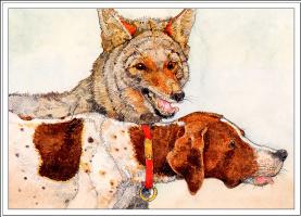 Джерри Пинкни. Волк и собака дома