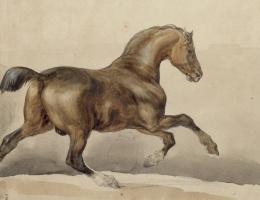 Théodore Géricault. Horse galloping