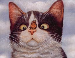 Лоуэлл Эрреро. Коты. Июнь 94