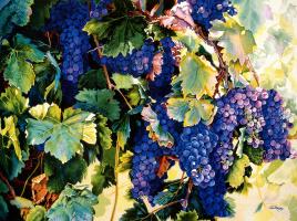 Джери Медуэй. Виноградная лоза