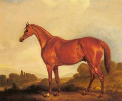 Джон Фернелей. Портрет скаковой лошади