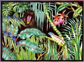 Джуди Вайс. Джуди Вайс. Тропический лес для детей 12