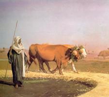 Жан-Леон Жером. Наступая на зерна