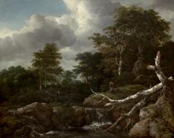 Jakob van Isaacs Ruisdael. Forest scene
