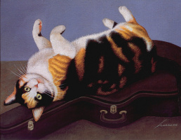 Лоуэлл Эрреро. Коты. Август 94