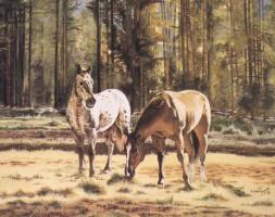 Дебора Вуатт Тейлор. Два коня