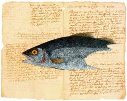 Серж Дурач. Рыба
