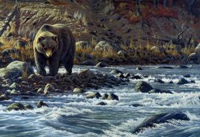 Вильгельм Гебель. Медведь