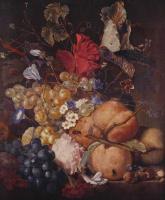 Ян ван Хейсум. Плоды, цветы и насекомые