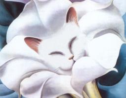 Джоджия Окефф. Белый кот