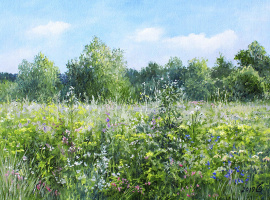 Сергей Владимирович Дорофеев. Summer grass