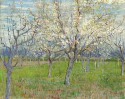 Винсент Ван Гог. Цветущий сад