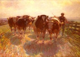 Генрих фон Цюгель. Перегон крупного рогатого скота