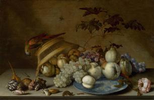 Балтазар ван дер Аст. Натюрморт с фруктами на фарфоровой тарелке, корзиной, попугаем и раковинами