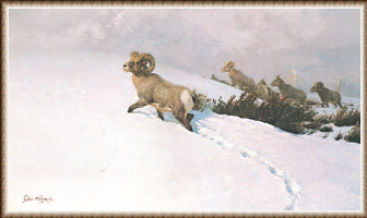 Джон Клаймер. Следы на снегу