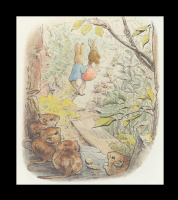 Бенджамин и Кролик Питер Банни. Сказка о кролике Питере 15