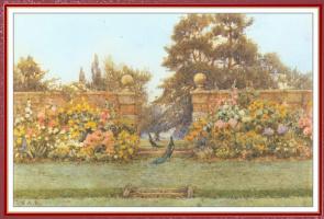 Эрнест Артур Роу. Павлин в саду