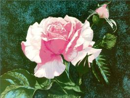 Бесс Дастон. Роза