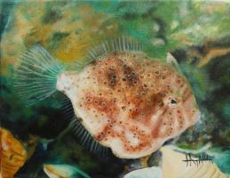 Наталия Емиловна Воденичарова. Хавайская рыба