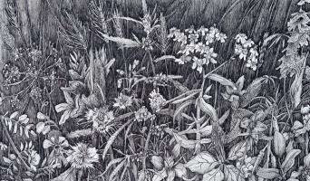 Крымские травы №8