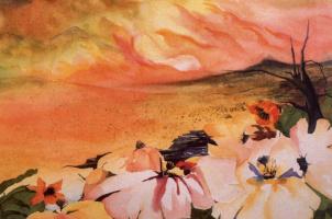 Клэр Конте. Пустыня