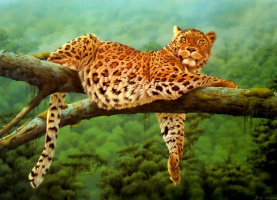 Эри Уилсон. Леопард