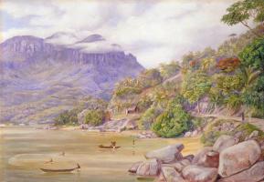 Марианна Норт. Рыбная ловля в порту Виктория, Маэ, Сейшельские острова