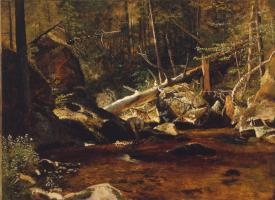 Альберт Бирштадт. Упавшие деревья над горным ручьем