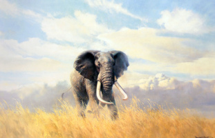Дональд Грант. Слон-самец