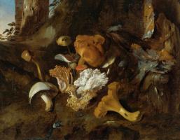 Отто Марсеус ван Скрик. Натюрморт с грибами и змеей
