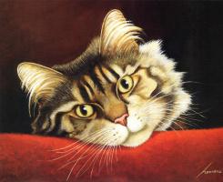 Лоуэлл Эрреро. Взрослый кот