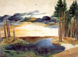 Albrecht Durer. The pond in the woods