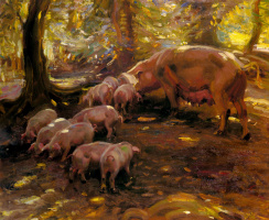 Alfred James Mannings. Pigs in the forest
